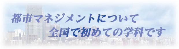 スタッフインタビュー1 キャッチコピー