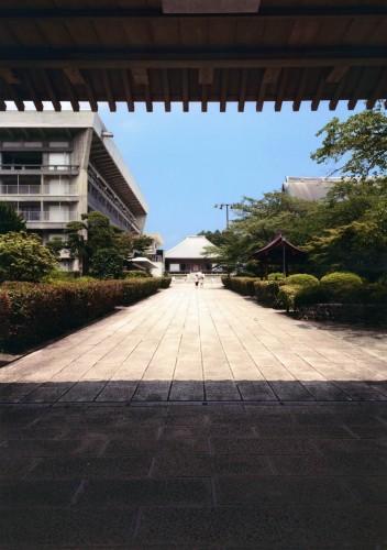 石畳 (丹羽 ひかり,東京都立中野工業高等学校3年生)