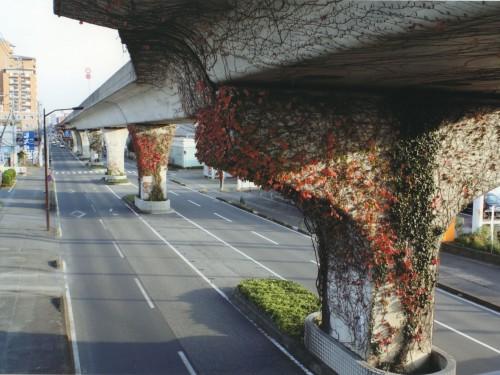 赤い橋脚 (小坂部 悠樹,茨城県立土浦工業高等学校1年)