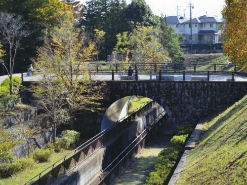 憩いの公園 (加藤 隼吾,茨城県立土浦工業高等学校1年)